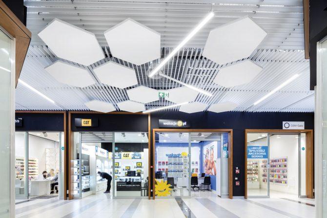 plafond suspendu orleans